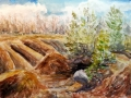 Ralf-Wall-Raflar_watercolour_11x14_cheltanham-badlands