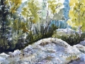 Ralf-Wall-Raflar_watercolour_8x10_Mossy-rocks-in-the-woods