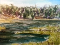 Ralf-Wall-Raflar_watercolour_8x10_saugeen-river