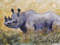 Ralf-Wall-Raflar_watercolour_5x7_Black-Rhino