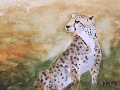 Ralf-Wall-Raflar_watercolour_5x7_Cheetah