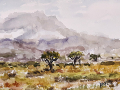 Ralf-Wall-Raflar_watercolour_5x7_Kilimanjaro-1