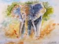Ralf-Wall-Raflar_watercolour_8x10_Kenya-Elephant