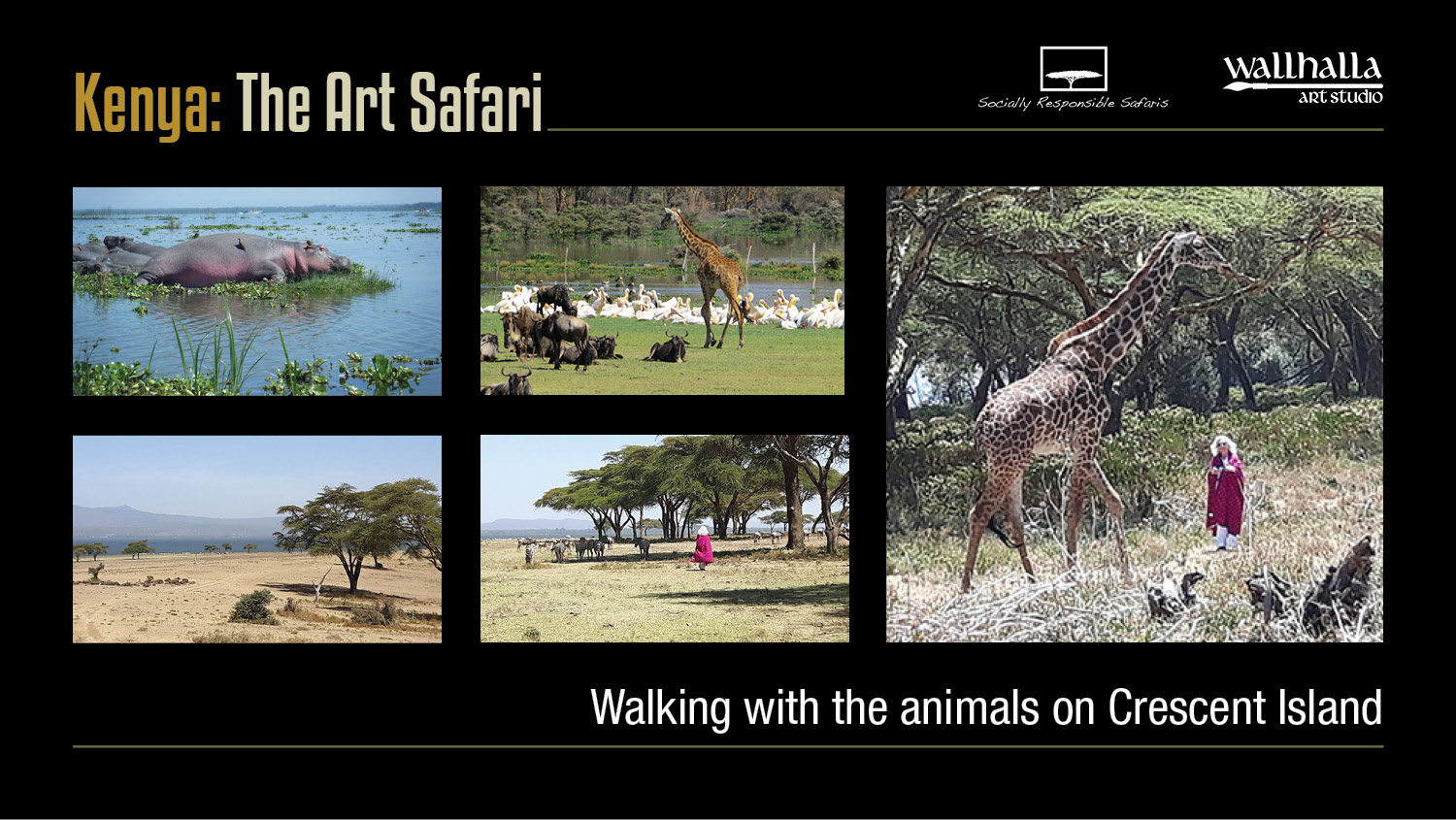 Art-Safari_Presentation_13