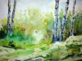 Ralf-Wall-Raflar_watercolour-guache_8x10_Birch-Light