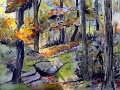 Ralf-Wall-Raflar_watercolour-ink_8x10_bernard-lake-trail