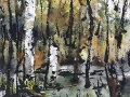 Ralf-Wall-Raflar_watercolour-ink_8x10_hidden-valley-bog