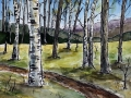 Ralf-Wall-Raflar_watercolour-ink_8x10_wooded-path