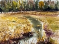 Ralf-Wall-Raflar_watercolour_8x10_dead-tadpole-creek