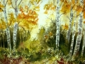 Ralf-Wall-Raflar_watercolour_8x10_golden-birches