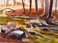 Ralf-Wall-Raflar_watercolour_8x10_murky-creek