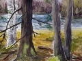 Ralf-Wall-Raflar_watercolour_8x10_spring-at-Halls-Lake